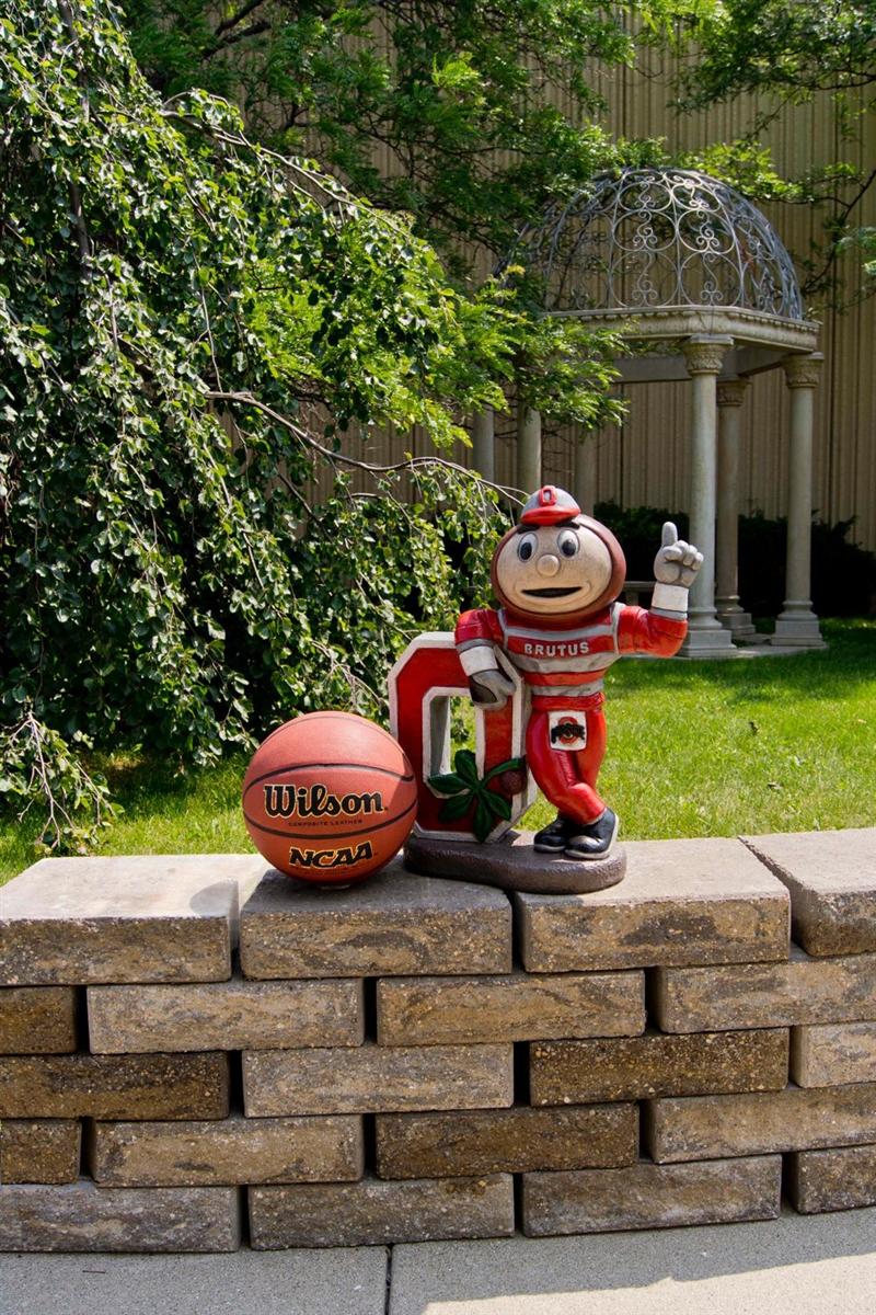 Ohio state university brutus buckeye statue -  269 95